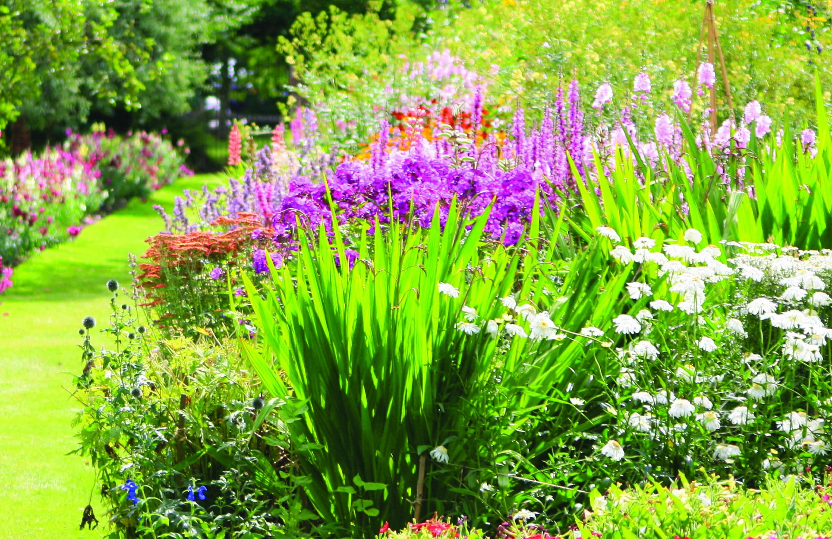 Un jardin à votre image