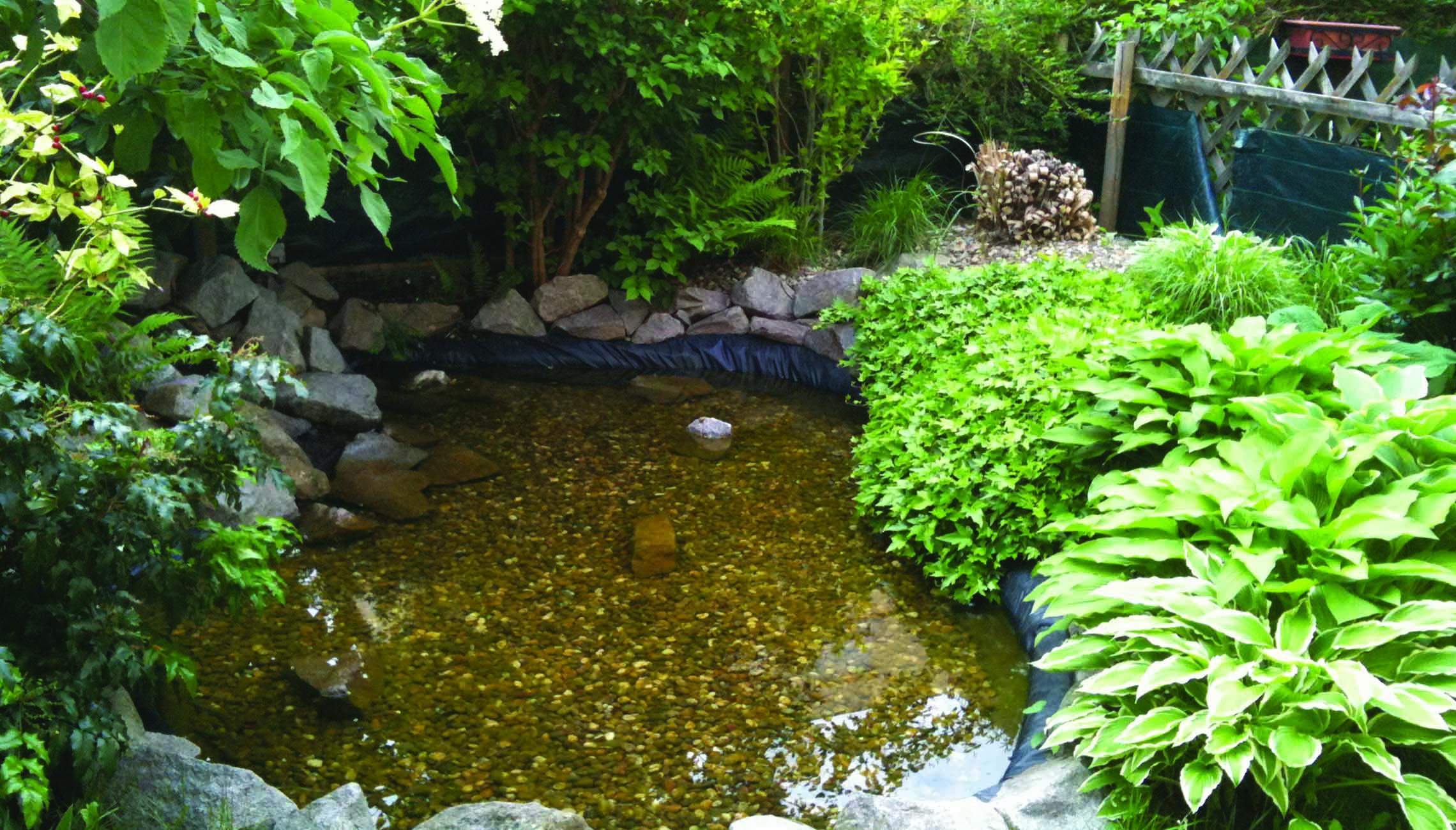 Création d'un bassin